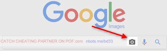 reverse username search